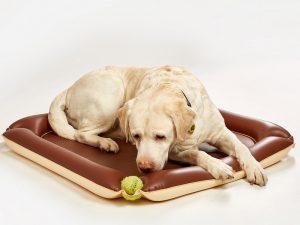 DOG PAD / Fatra
