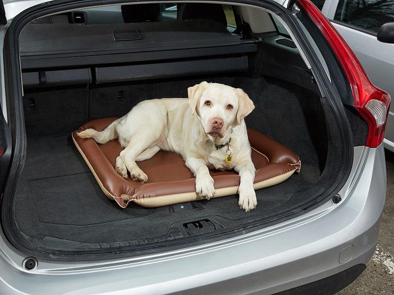 Podložka pro psy DOG PAD / Fatra